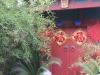 beijing-2011-09-05-13h32m58