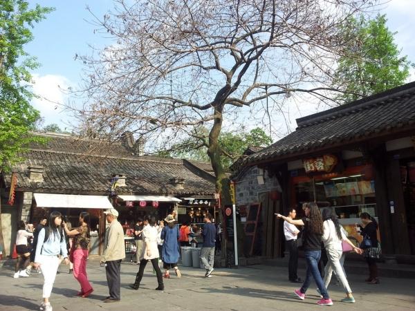 blog_chine_20160414_165940_jin_li_lu