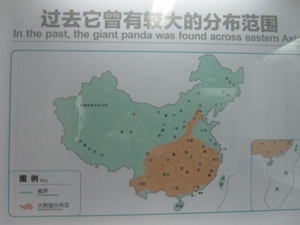 blog_chine_20160402_13h39m33_panda